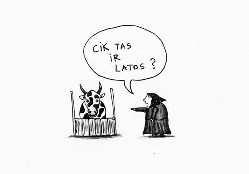 latos_500px